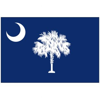 Outdoor South Carolina State Flag