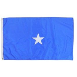 Outdoor US Air Force Brigadier General Flag
